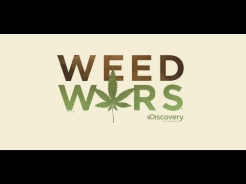 Weed Wars: Medical Marijuana Hits Reality TV