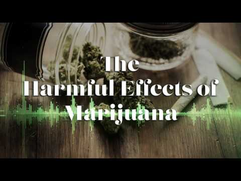 """The Harmful Effects of Marijuana"""