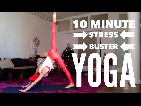 10 Minute Holiday Stress Be Gone Yoga Routine | Tara Stiles