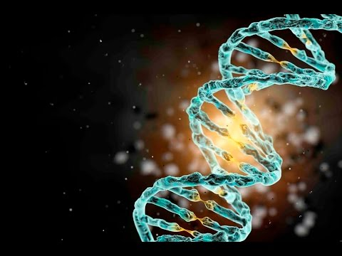 Schizophrenia gene' discovery sheds light on possible cause